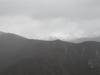 20090526a.jpg
